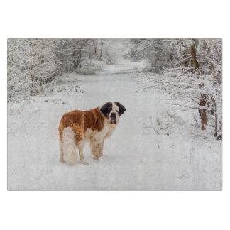 St Bernard dog in the snow Boards