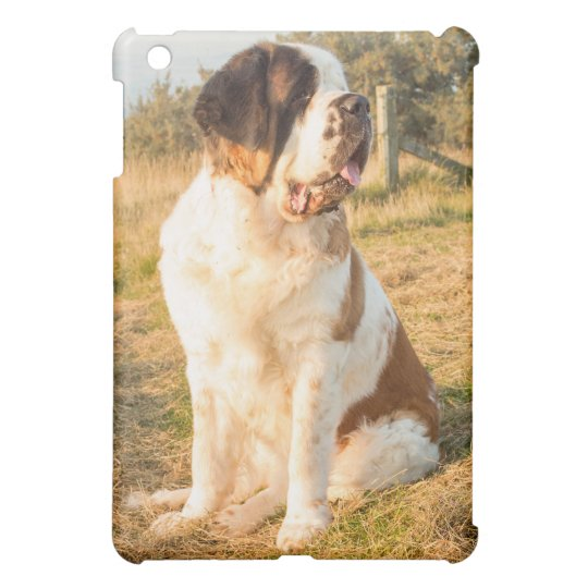 St Bernard dog iPad Mini Case