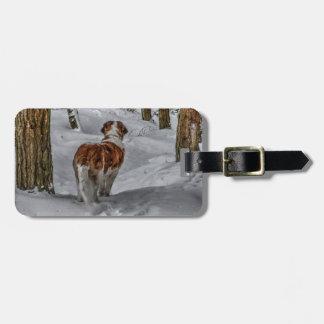 St Bernard dog tag