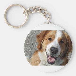 St. Bernard Mix Happy Dog Keychain