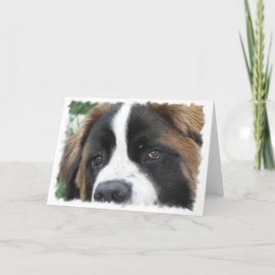 St Bernard Dog Breed Gifts on Zazzle CA