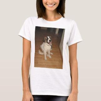 st bernard sitting T-Shirt