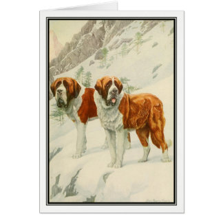 St. Bernards by Louis Agassiz Fuertes Card