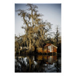 St Charles Parish Swamp Reflections Poster