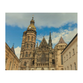 St. Elisabeth Cathedral in Kosice, Slovakia Wood Wall Art