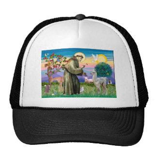 St Francis and Llama Baby Trucker Hat