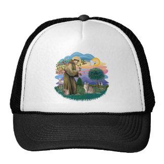 St Francis (ff) - Blue Abyssinian cat Trucker Hat