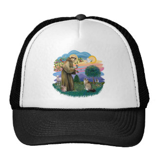 St Francis (ff) - Maine Coon cat (tabby) Trucker Hat