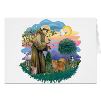 St Francis (ff) - Red Persian cat Card