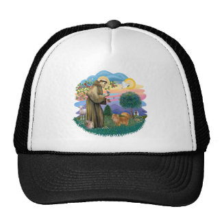 St Francis (ff) - Red Persian cat Trucker Hat