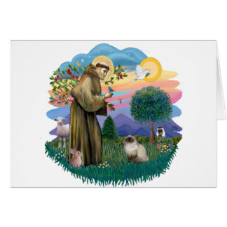 St Francis (ff) - Seal Point Himalayan cat Card