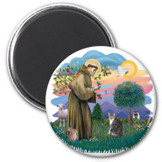 St Francis (ff) - Tabby and white cat 2 Inch Round Magnet