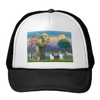 St Francis (W) - Two Shelties (D&L) Trucker Hat