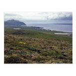 St. George Island, Pribilofs 1987 Postcard