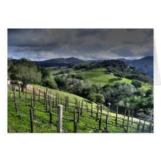 St. Helena, California Vineyard Card