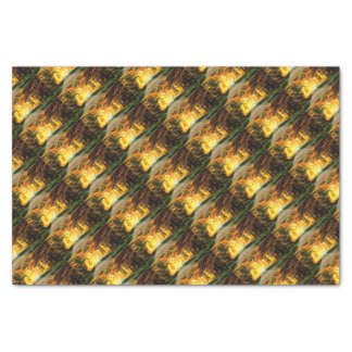 St Joseph Island Country Road Tissue Paper