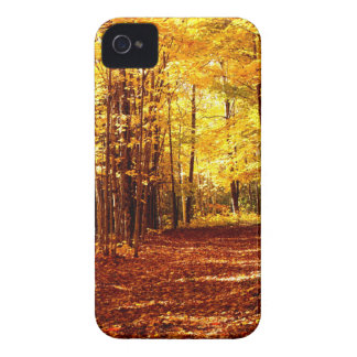 St Joseph Island Fall Colours iPhone 4 Cover