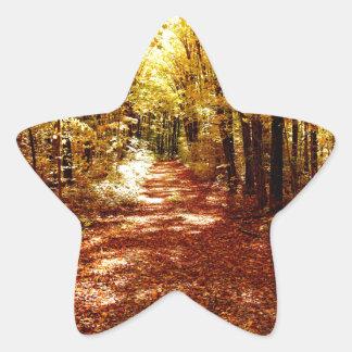 St Joseph Island Fall Colours Star Sticker