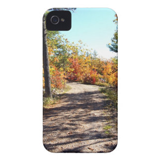 St Joseph Island Fall Path iPhone 4 Cover