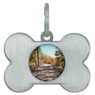 St Joseph Island Fall Path Pet Name Tag