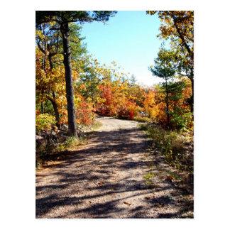 St Joseph Island Fall Path Postcard
