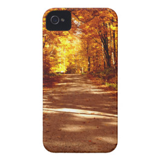 st Joseph Island Fall Tour iPhone 4 Cases