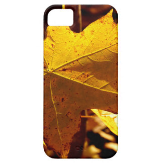 St Joseph Island Maple Leaf Case For The iPhone 5