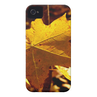 St Joseph Island Maple Leaf Case-Mate iPhone 4 Cases