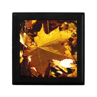 St Joseph Island Maple Leaf Gift Box