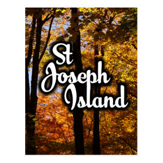 St Joseph Island Maple trees Postcard