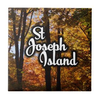 St Joseph Island Maple trees Tile