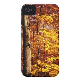 St Joseph Island Sugar Maples Case-Mate iPhone 4 Case