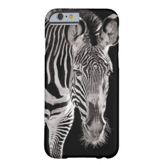 St Louis Zebra Barely There iPhone 6 Case