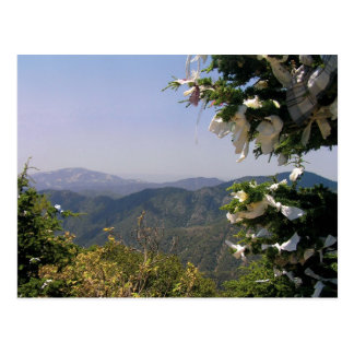 St Mary's throne Troodos Mountains Cyprus postcard