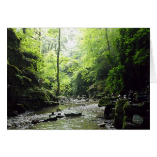 St Nectan's Glen Cornwall Photograph Card