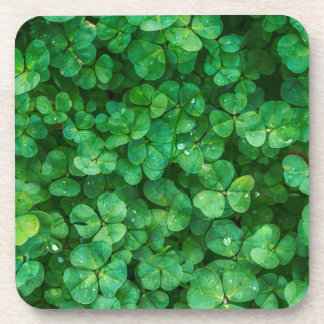 St Patrick lucky clovers Coaster