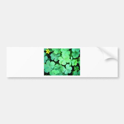 St. Patricks Bumper Sticker