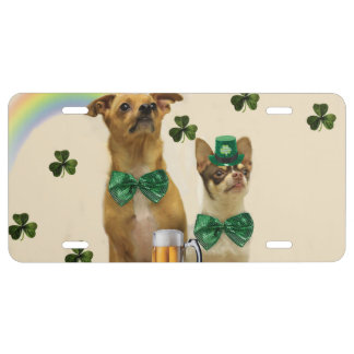 St. Patrick's Chihuahua dogs License Plate