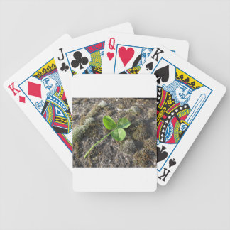 St. Patrick's Day background . Clover on the rock Bicycle Playing Cards