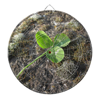 St. Patrick's Day background . Clover on the rock Dart Board
