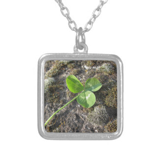 St. Patrick's Day background . Clover on the rock Silver Plated Necklace