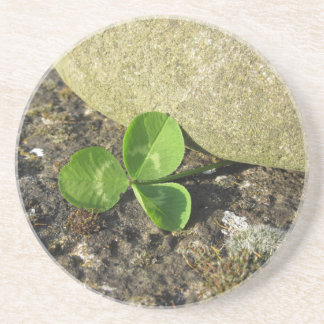 St. Patrick's Day background with clover by stone Coasters