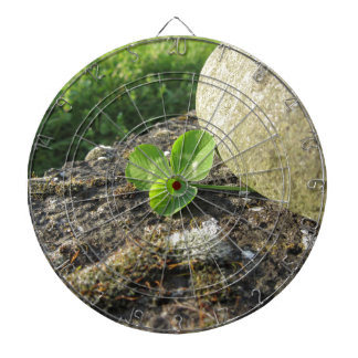 St. Patrick's Day background with clover by stone Dartboards
