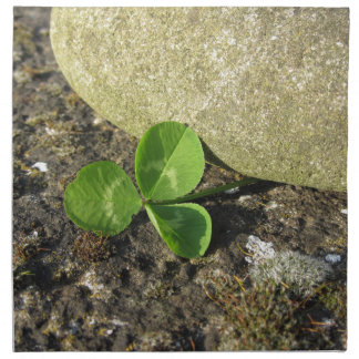 St. Patrick's Day background with clover by stone Napkin