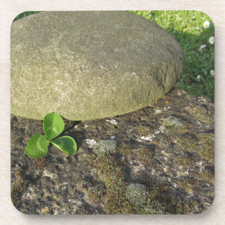 St. Patrick's Day background with clover shamrock Coaster