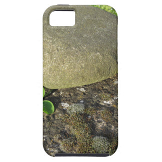 St. Patrick's Day background with clover shamrock iPhone 5 Cases
