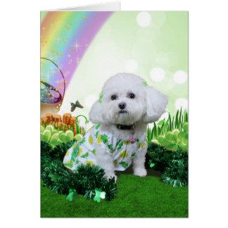 St Patrick's Day - Bichon Frise - Mia Greeting Cards