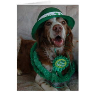 ST PATRICK'S DAY BRITTANY CARD