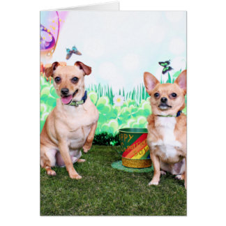 St Patricks Day - Chihuahua - Rockwell and Rambo Note Card