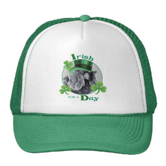 St. Patrick's Day Miniature Poodle Trucker Hat